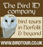 visit Birdtour for your Norfolk birding needs