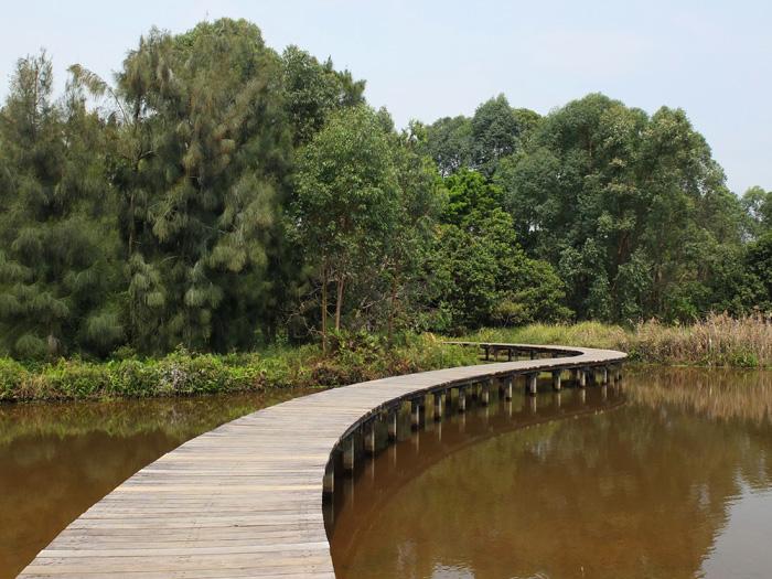 Hong Kong Wetland park 2