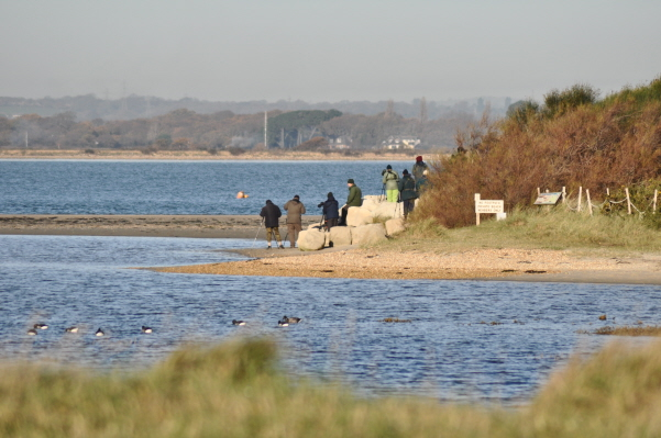 Image Result For Black Point Hayling Island