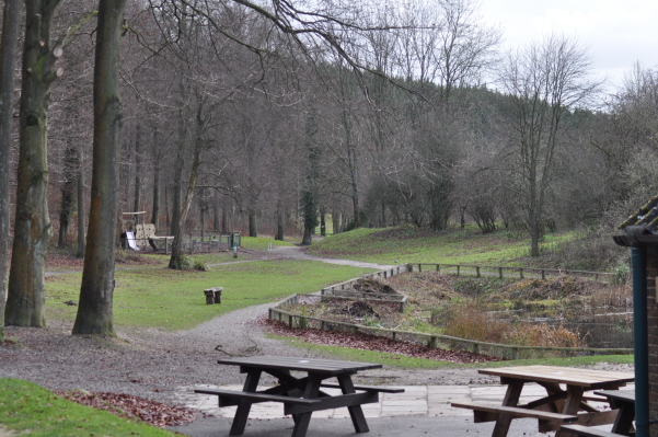 Image result for queen elizabeth country park