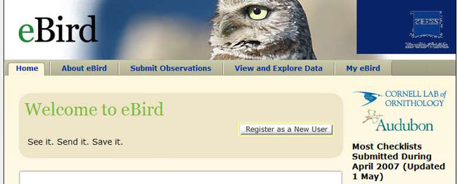 Using eBird An easy way to make a big difference for bird