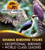 Ashanti African Tours