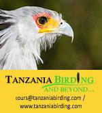 Tanzania Birding